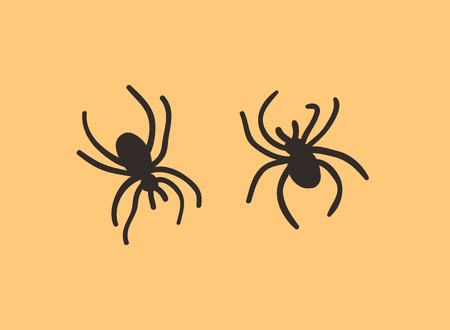 Hand drawn illustration Couple of Spider. Creative ink art work. Actual vector drawing Insects. Artistic isolated Halloween object