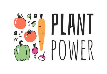 Hand drawn set of vegetables, fruits and eco friendly words. Vector artistic doodle drawing food and Vegan quote. Vegetarian illustration and positive text PLANT POWER