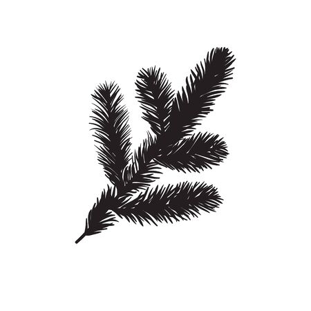 Hand drawn Holiday illustration. Creative ink art work. Actual drawing Christmas trees twig isolated on white background