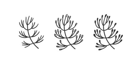 Hand drawn set of objects for design use. Black Vector doodle flower on white background.  Abstract pencil boho drawing twig. Artistic illustration elements plant