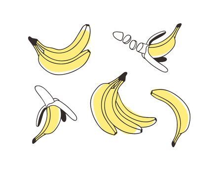 Doodle Banana. Hand drawn stylish fruit and vegetable. Vector artistic drawing fresh organic food. Summer illustration vegan ingrediens for smoothies