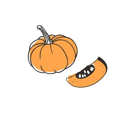 Doodle pumpkin. Hand drawn stylish fruit and vegetable. Vector artistic drawing fresh organic food. Summer illustration vegan ingrediens for smoothies