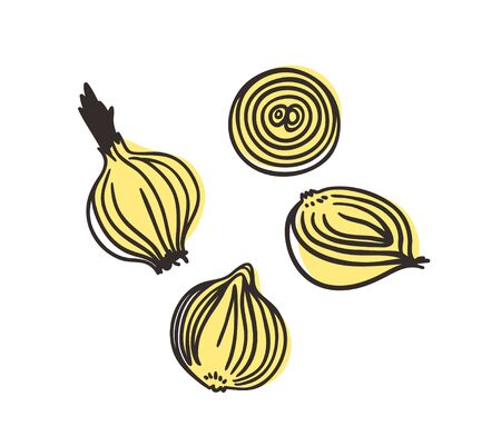 Doodle onion. Hand drawn stylish fruit and vegetable. Vector artistic drawing fresh organic food. Summer illustration vegan ingrediens for smoothies