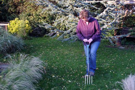 female gardener aerating a lawn