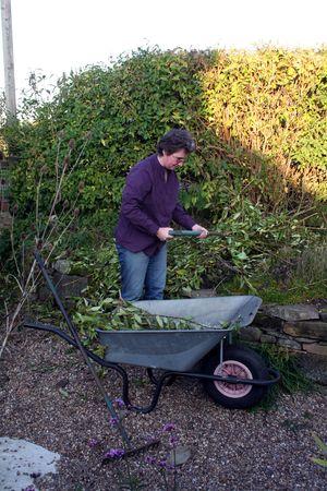 Female gardener tidying branches