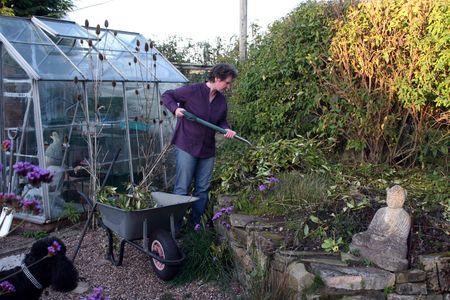 Female gardener clearing fallen branches