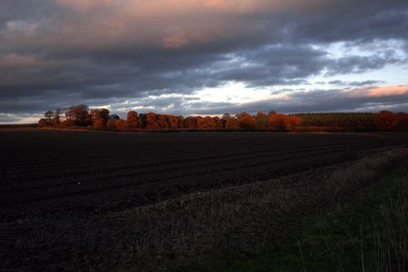 An autumnal evening over Nottinghamshire farmland.
