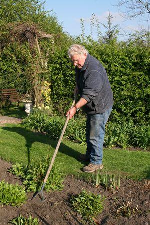 Man hoeing the garden