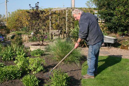 Man weeding the garden
