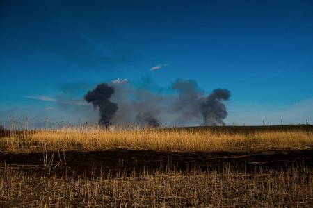 Brennende Schilf, brennende Schilf im Fluss, Rauch aus Schilf Standard-Bild