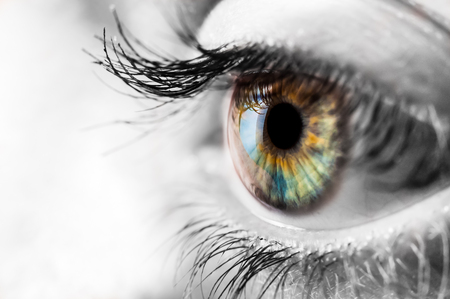 Colorful iris of the human eye with black and wite surrounding Stock Photo