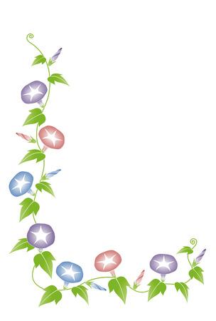 朝顔  イラスト・ベクター素材