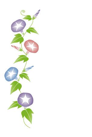 나팔꽃 일러스트