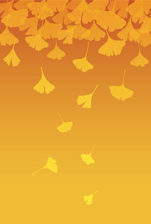 japanese fall foliage: Yellow ginkgo leaves in orange gradient background