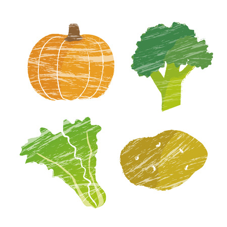 dietary fiber: Illustration of vegetable, pumpkin, broccoli, lettuces and potato