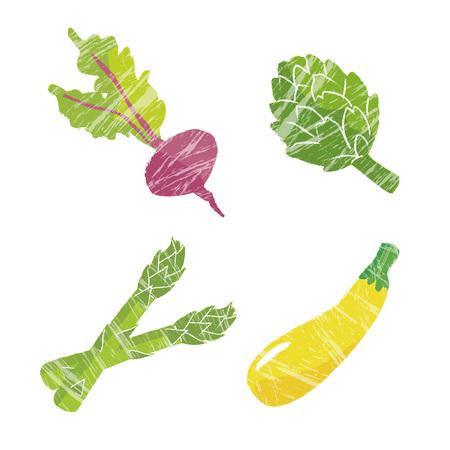 zucchini: Vegetable illustration, beets, artichoke, asparagus and zucchini