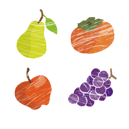 red grape: Fall and winter fruits illustration, pear, apple, grapes and persimmon