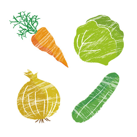 dietary fiber: Illustration of vegetable, carrot, cabbage, onion and cucumber Illustration