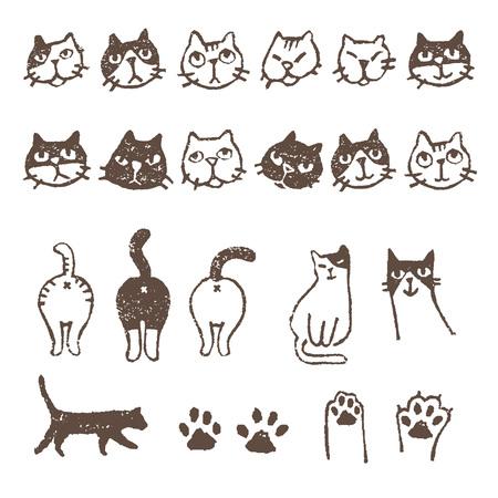 Vaus soorten katten, gezicht, poot, pad en footprint