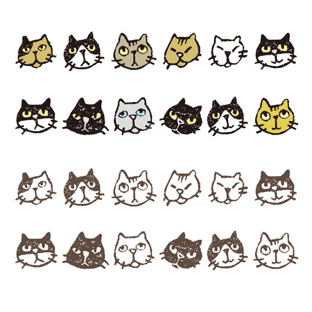 Various kinds of cats face expressions in color