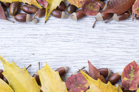 painted wood: Acorn and autumn leaf border frame on painted wood board