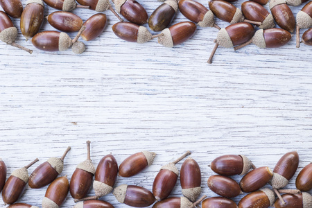 painted wood: Acorn border frame on painted wood board Stock Photo