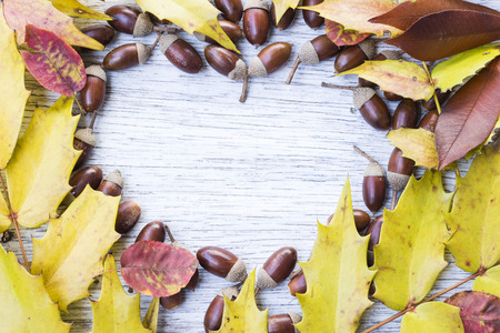 painted wood: Heart shape frame of acorns and autumn leaves on painted wood board