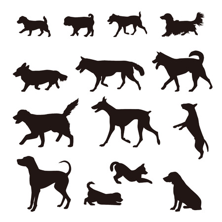 Different kinds of dog silhouette, Shiba, Akita, Golden retreaver, Beagle, German Shepherd, Golden Retriever, Jack Russell Terrier, Corgi, Hound dog, Pug, Dalmatian, Dachshund