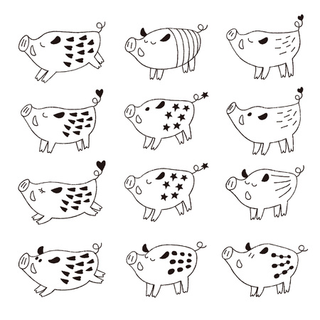Black and white cute wild pigs, boars illustration