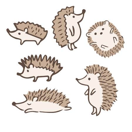 Cute hedgehogs with different poses, hand-drawn illustration