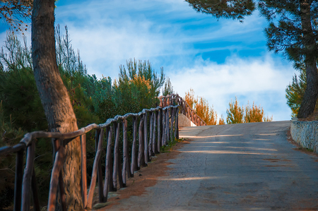 In the middle of the pine forest, a beautiful road leading to the sea. The clouds complement the beautiful landscape.