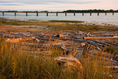 Fraser River  in Vancouver, Canada at the end of a warm day in August photo