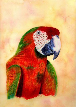 realism: Parrot