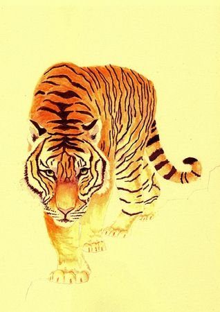 realism: Tiger