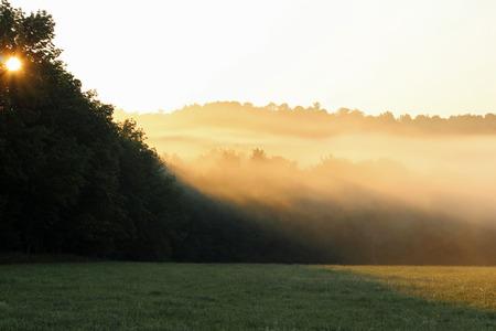 Foggy heuvel