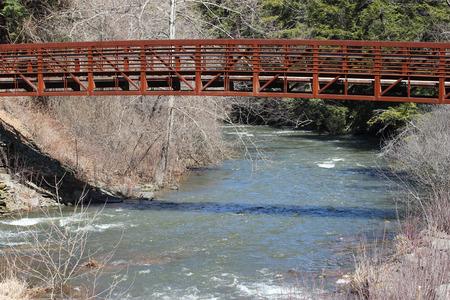 foot bridges: South Branch Tunkhannock Creek