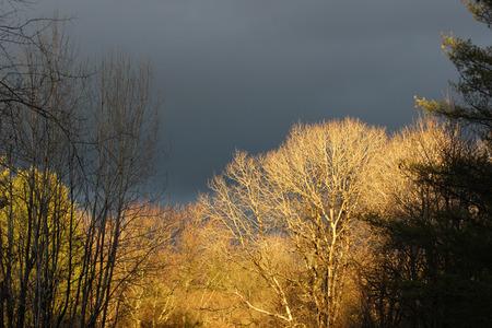 dark: Dark skies Stock Photo