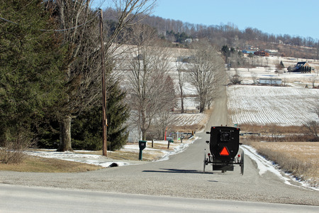 amish buggy: Amish buggy. An Amish buggy traveling on the road the old fashioned way.