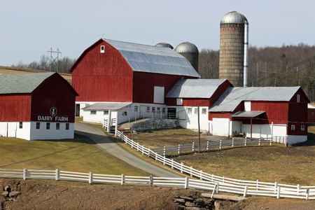 A dairy farm with well maintained buildings, silos and white fence.