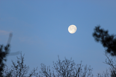 A full moon shows craters and other details on the moon's surface. Reklamní fotografie