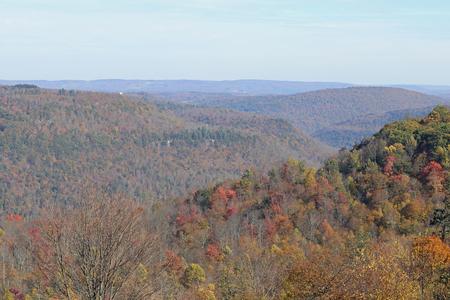 그들의 다채로운가 나무와 끝없는 산의 전망.