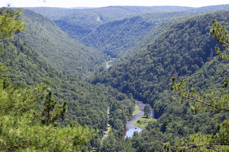 The Pennsylvania Grand Canyon located in the Tioga State Forest near Wellsboro Pennsylvania.