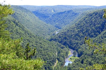 Ein Blick auf die Pine Creek Schlucht, auch bekannt als Pennsylvania Grand Canyon.