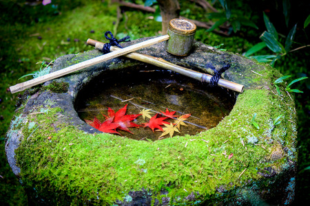 bowl sink: Red leafs sink inside stone bowl Stock Photo