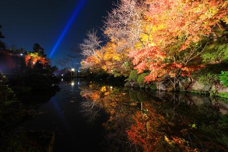 miror: Night scene of colorful trees