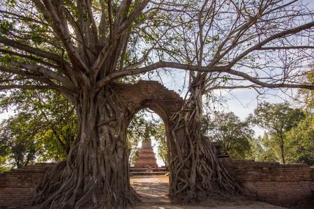 Miracle Gateway to the passage of time at ruins of Wat Phra Ngam(Wat Cha Ram),Phra Nakorn Si Ayutthaya,Thailand