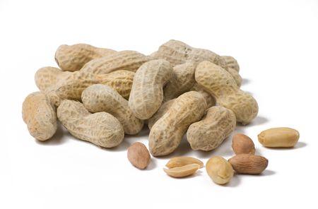 白い背景の上のシェルでピーナッツ