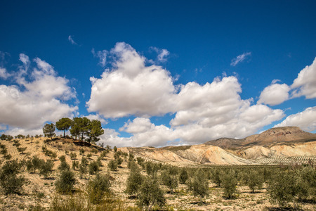 andalusia: Hills of Andalusia, Spain
