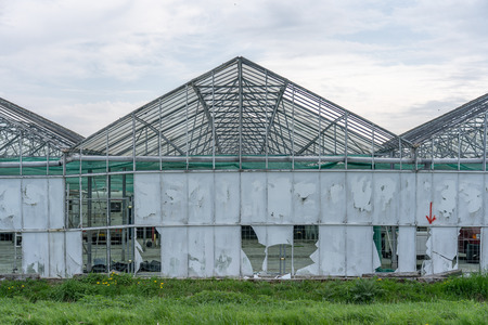 Greenhouses with broken glass in a meadow. Due to the broken glass the construction is clearly visible. In the past, plants and fruit were grown in the greenhouses Фото со стока