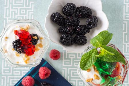 jello: Closeup of fruit parfait with greek yogurt and mint and strawberry jello. Stock Photo